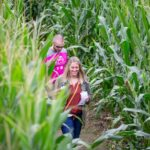 Man and woman walking through a corn field.